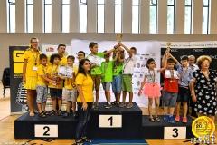 cursuri de sah pentru copii (5) - Copy